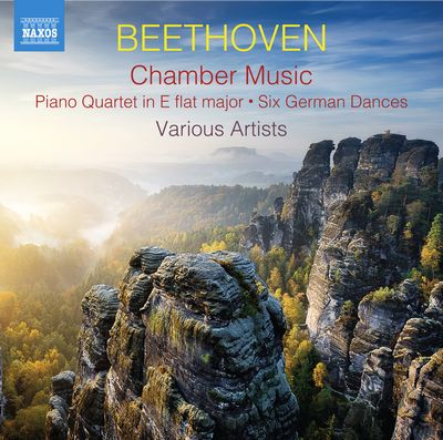 FBC_A3_202005_CD_Naxos_8.574040-41_Beethoven