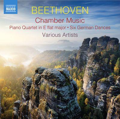 FBC_A3_202005_CD_Naxos_8.574040-41_Beethoven